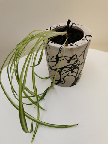 Custom designed plant pot made of concrete with black paint scribbled on it