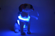 Rechargeable LED Pet Harness