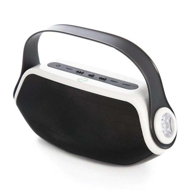Powerful Bluetooth Speakers with Built-in Power Bank, Digital Radio, Microphone, Torch (Black-White)
