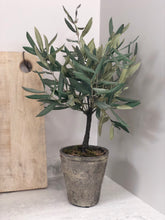 Load image into Gallery viewer, Faux Olive Tree