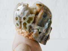 Carrying Ozma'z Head Antique German Bisque Doll with Ocean Jasper Crystal Skull