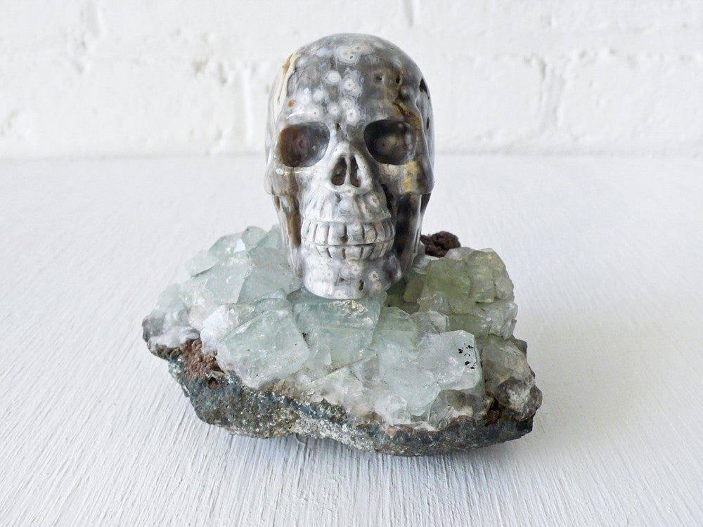 Ocean Space Jasper Skull Crystal on India Crystal Geode