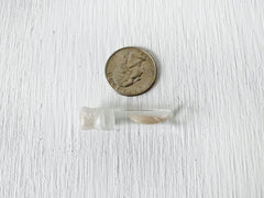 Real Mink Tooth Specimen in Tiny Glass Cork Vial Sealed with Wax