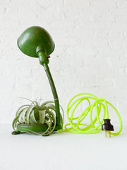 30% SALE Oh My Lamp! Vintage Industrial Gooseneck with Neon Textile Cord and Live Air Plant