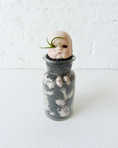 Cranky No Play Baby Vintage Bisque Doll Air Plant Garden