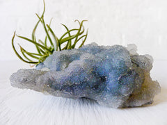 10% SALE Chalcedony India Mineral Fuzzy Air Plant Clump Crystal Garden