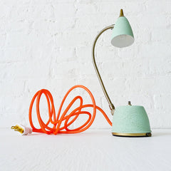 Spring Fresh Mint Green Gooseneck Lamp w/ Neon Orange Net Color Cord