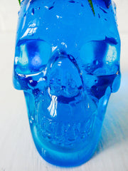 Carved Blue Obsidian Skull with Live Air Plant Mohawk