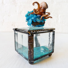 "30% SALE ""Little Miss Splash Puss"" Real Octopus Specimen on Jewelry Box"