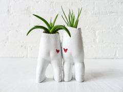 I Heart Mustache Twins Antique German Dolls Air Plant Garden Love