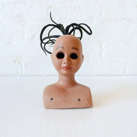30% SALE Baby Girl Hair is Cray Air Plant Garden
