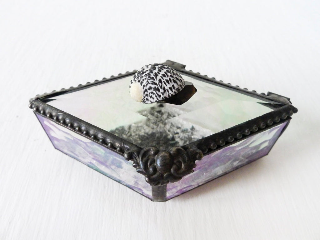 Spotted Seashell Diamond Shaped Beveled Glass Jewelry Box with Smokey Black Crystal Quartz