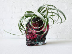 Large Purple Glass Crystal Skull - HUGE Air Plant Garden Planter