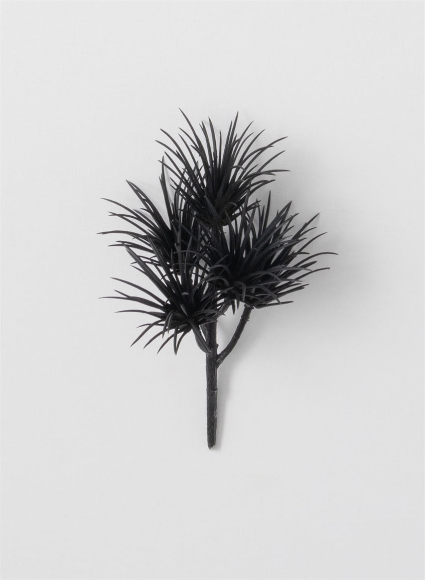 Succulent Pick-Black