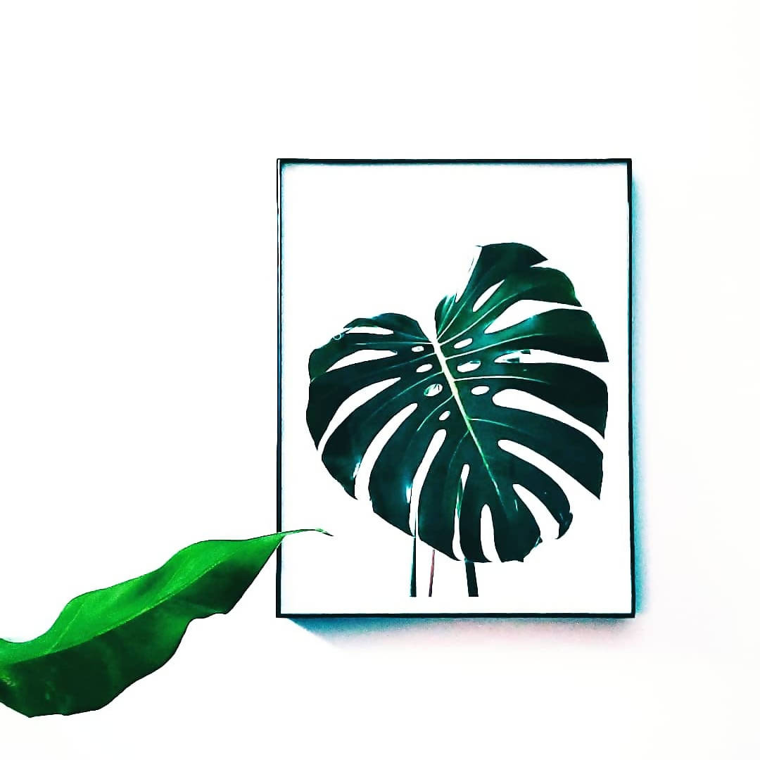 Monstera Deliciosa Print x Charity