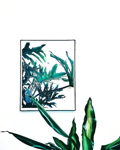 Philodendron Hope Selloum Print x Charity