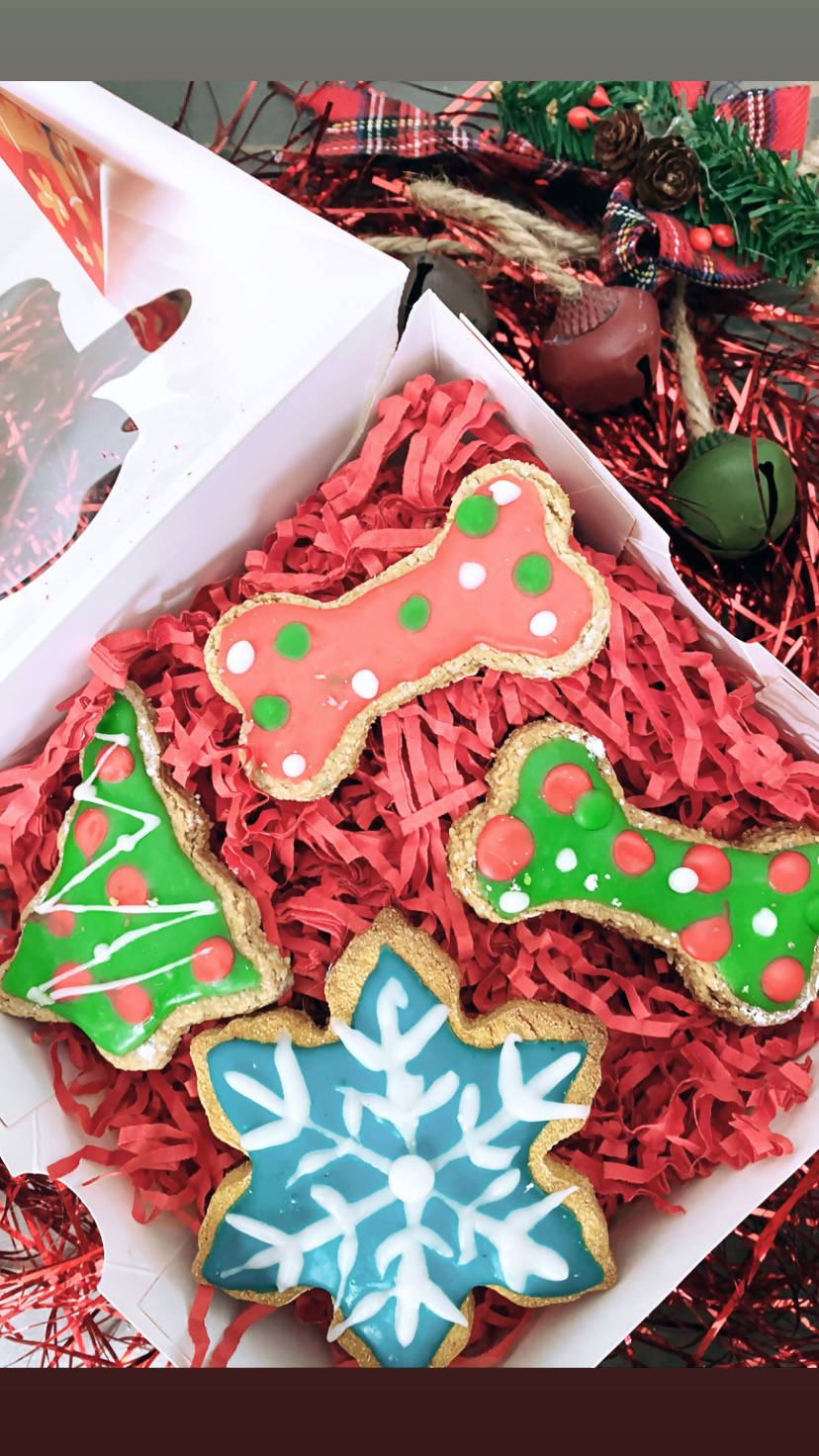 Christmas Cookie Dog Treat Box