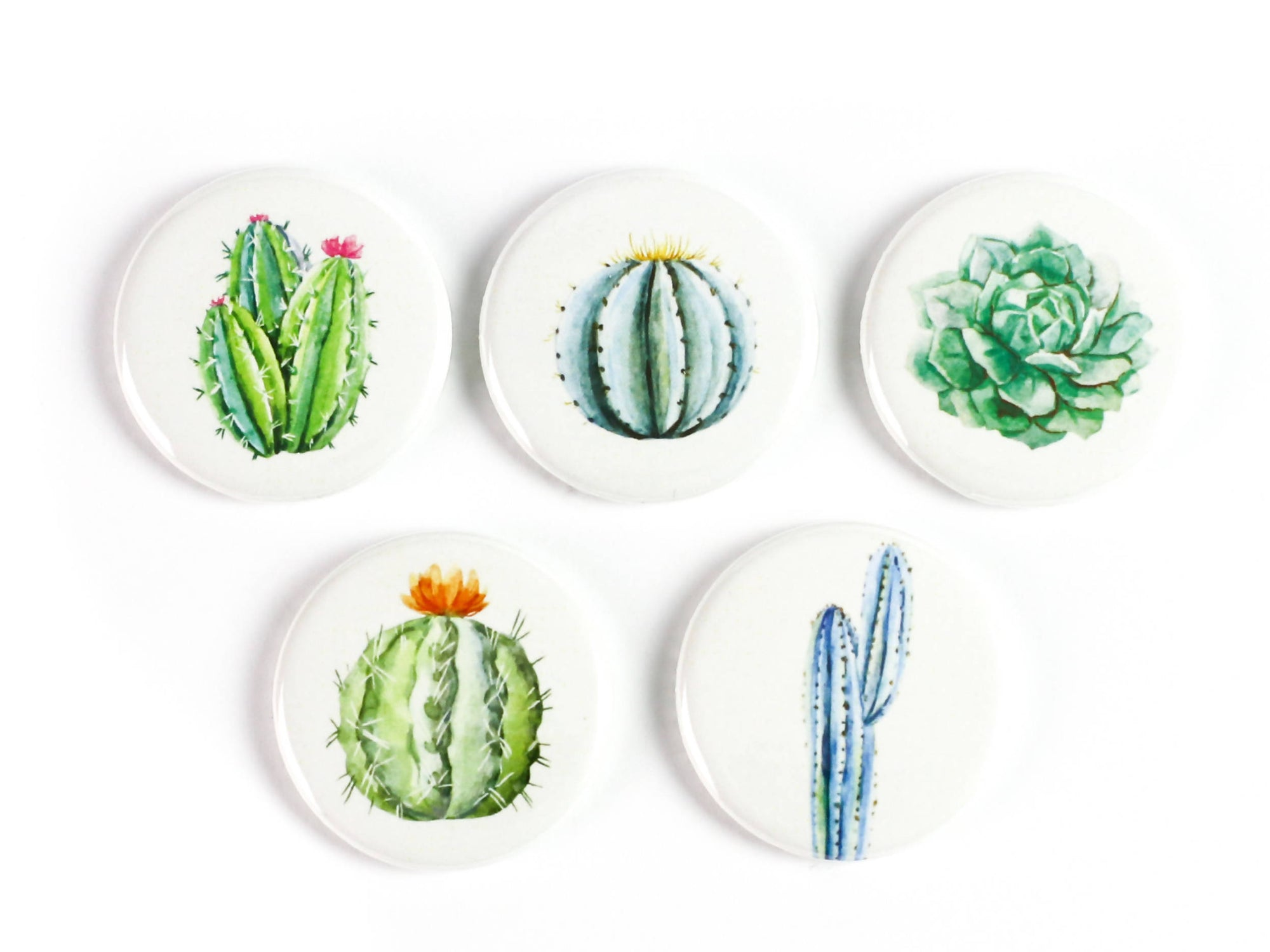Watercolor Cacti Strong Ceramic Magnets or Pinback Buttons, Cactus: Supports The Ottawa Food Bank's Community Harvest Program