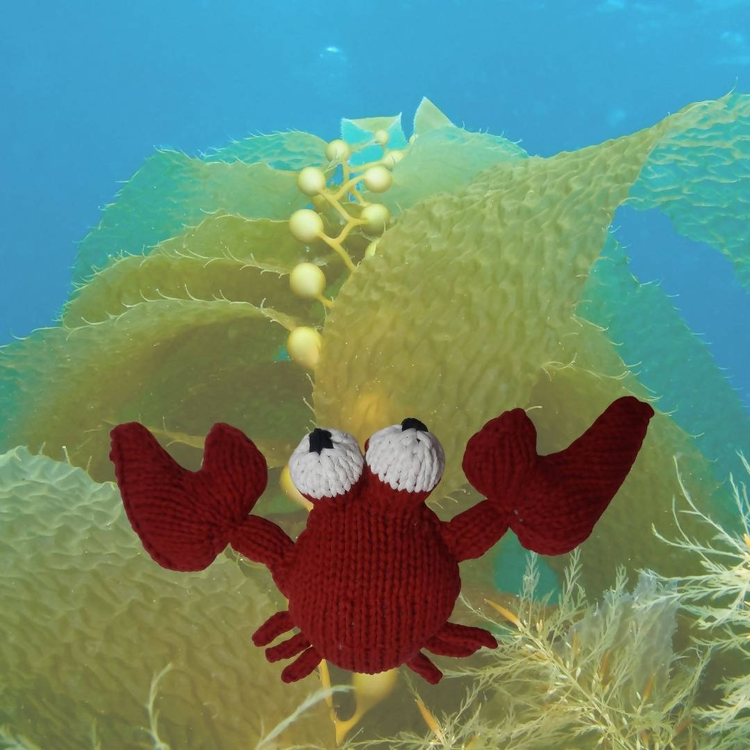 Crab (Stuffed Toy)