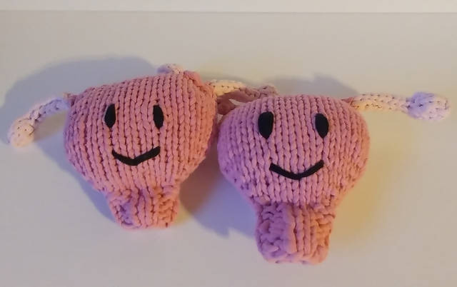 Stuffed Uterus (midwife/birth gift)