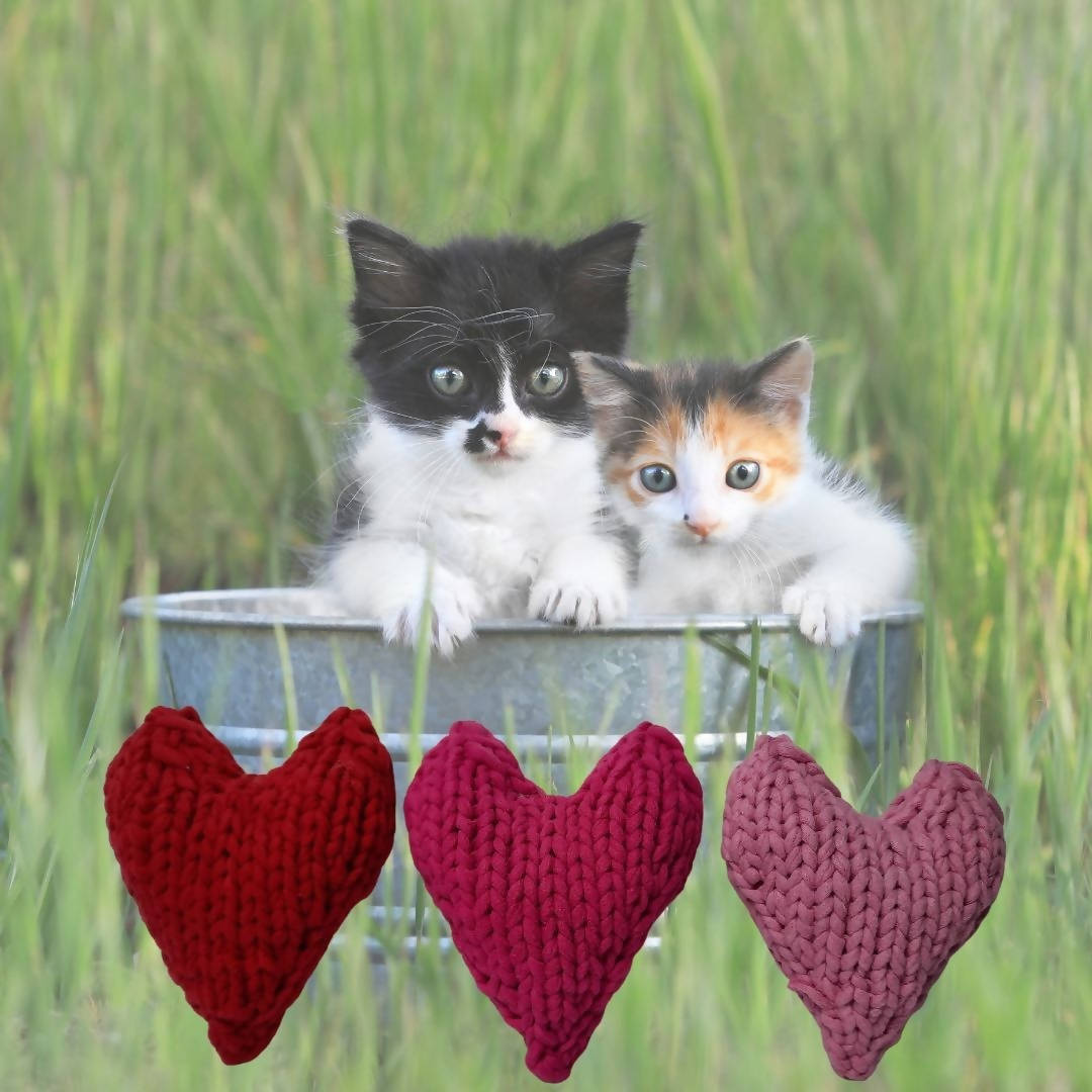 Valentine Heart (Stuffed Cat Toy)