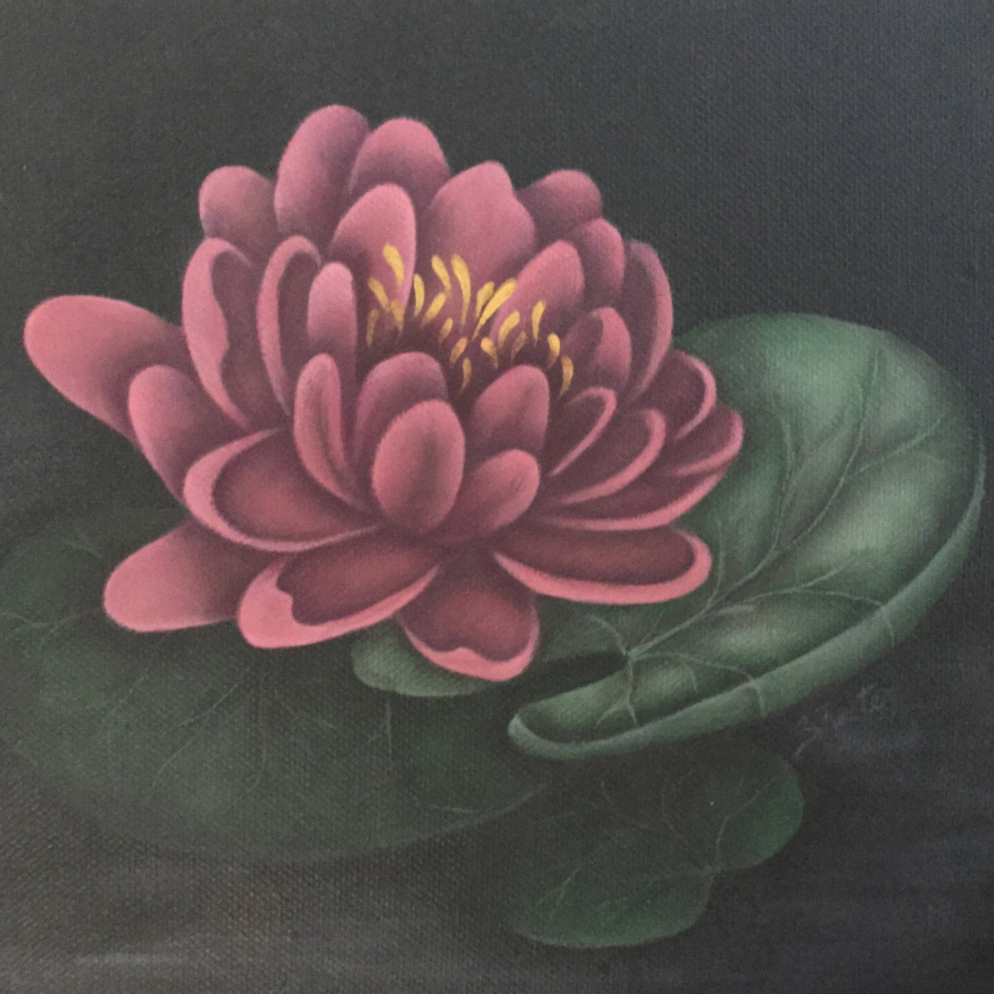 "A Small Square Canvas 8"" x 8"" with a Hand Painted Rose Coloured Water Lily"