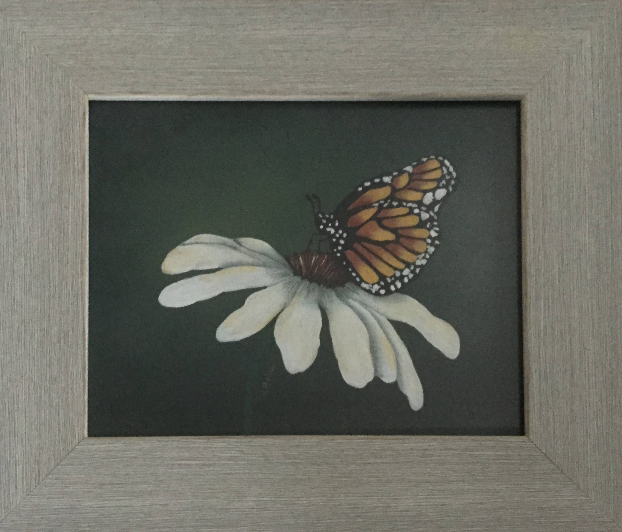 Beautiful Framed Table Art of a White Daisy and a Monarch Butterfly