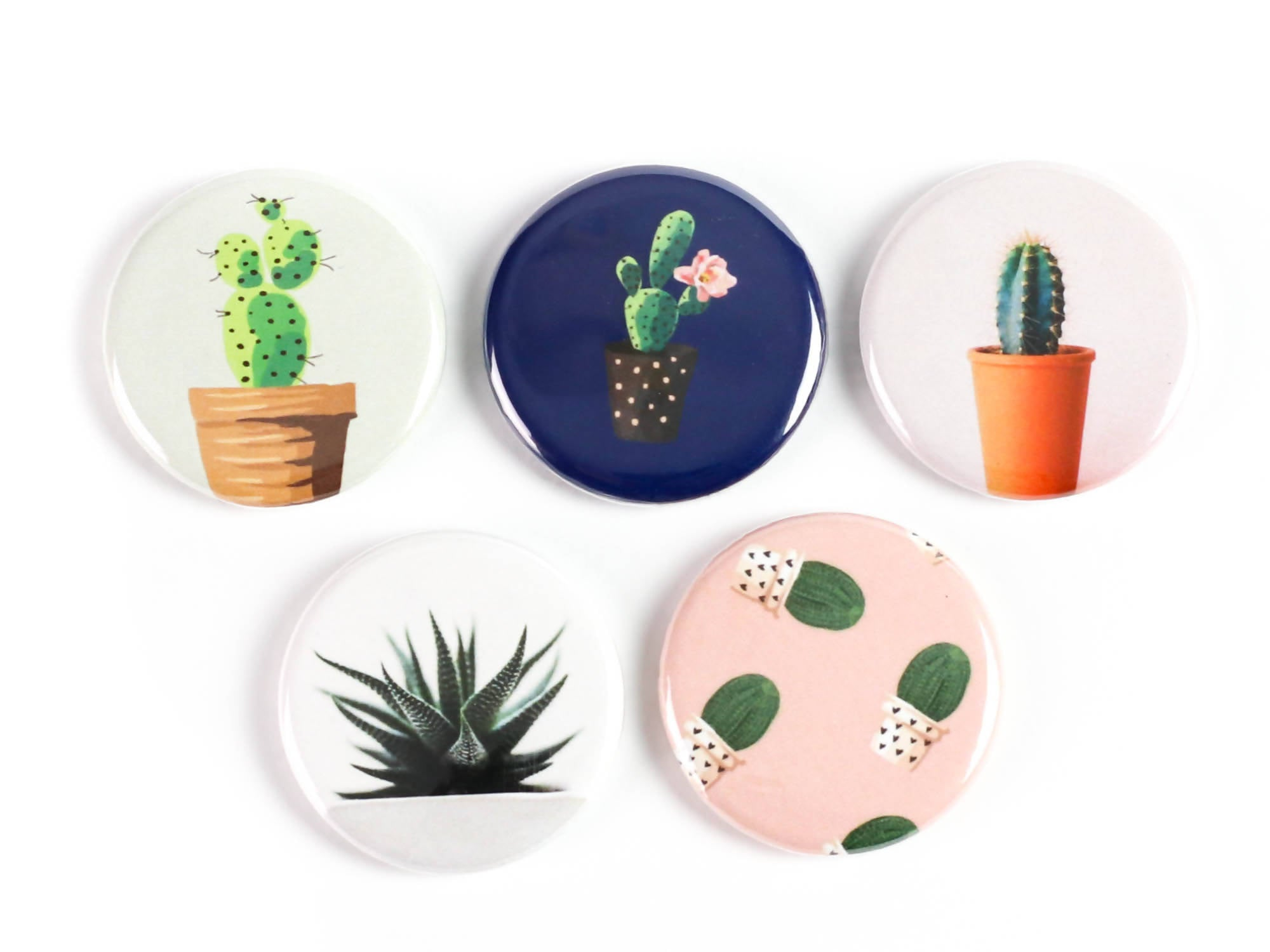 Cacti and Succulent Magnets Buttons