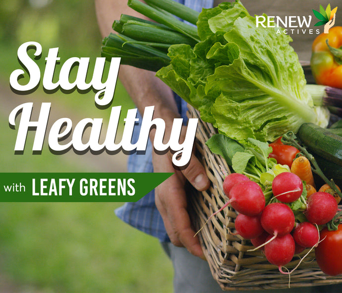 Stay Healthy with These Powerful Leafy Greens