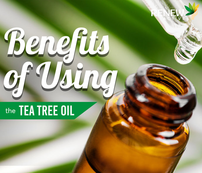 What are the Benefits of Using Tea Tree Oil?