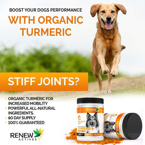 Organic Turmeric Joint Supplement for Dogs - 120 Soft Chews