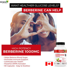 Load image into Gallery viewer, Berberine 500mg - 90 Capsules