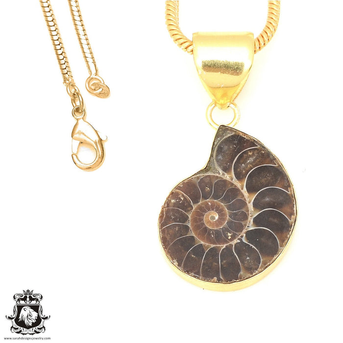 Ammonite 24K Gold Plated Pendant 3mm Snake Chain GPH671