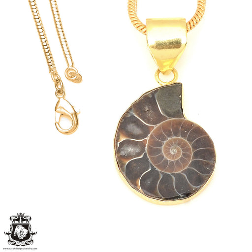 Ammonite 24K Gold Plated Pendant 3mm Snake Chain GPH675