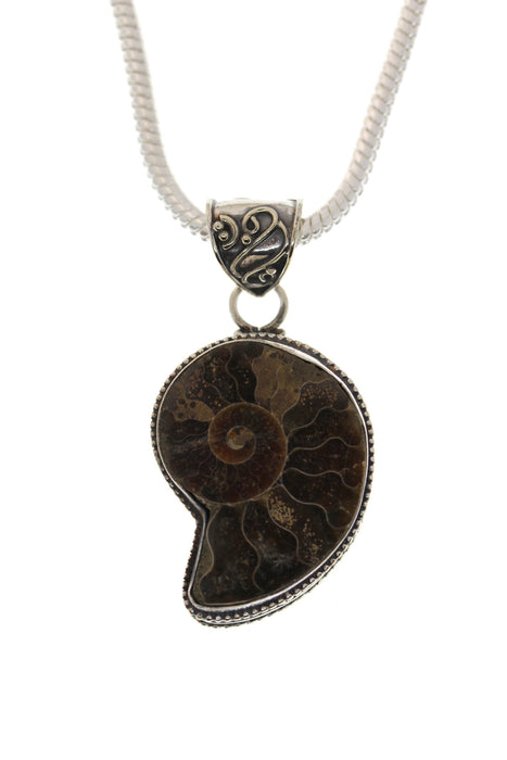 Ammonite Pendant 4mm Snake Chain  P1698