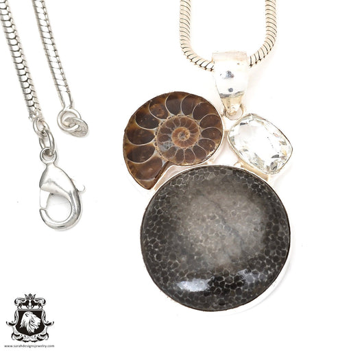 Stingray Coral Fossil Ammonite Pendant 4mm Snake Chain P7262