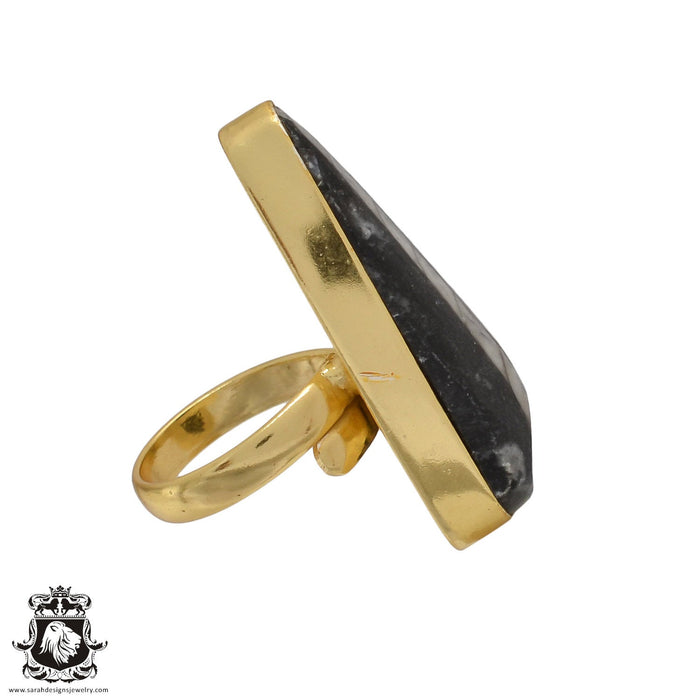 Size 6.5 - Size 8 Adjustable Orthoceras Fossil 24K Gold Plated Ring GPR459