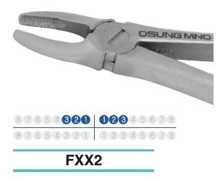 Adult Extraction Forcep, FXX2 - Osung USA