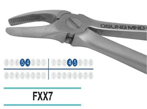 Adult Extraction Forcep, FXX7 - Osung USA