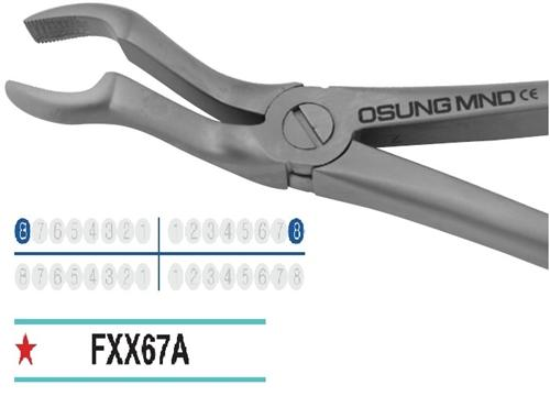 Adult Extraction Forcep, FXX67A - Osung USA