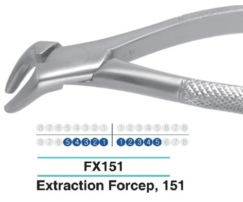 Dental Extraction Forcep LOWER TERRIORS ANTERIOR, FX151 - Osung USA