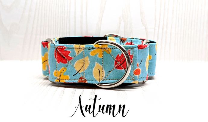 Autumn Fall Leaves Dog Collar