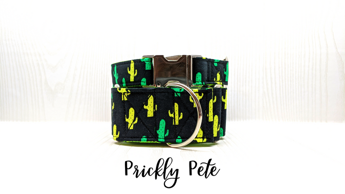 Prickly Pete Cactus Dog Collar