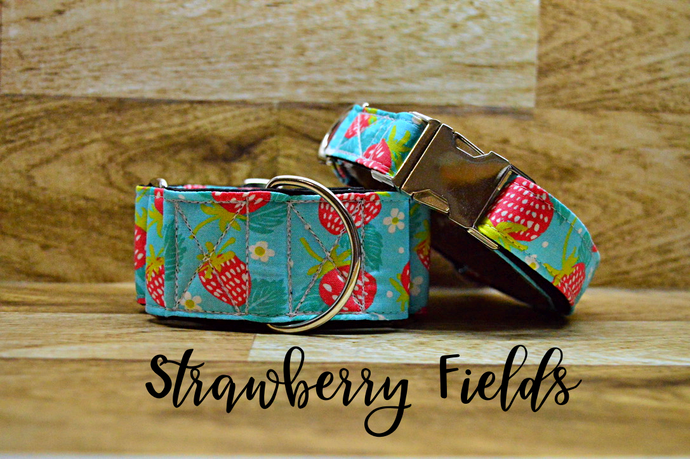 Strawberry Fields Dog Collar