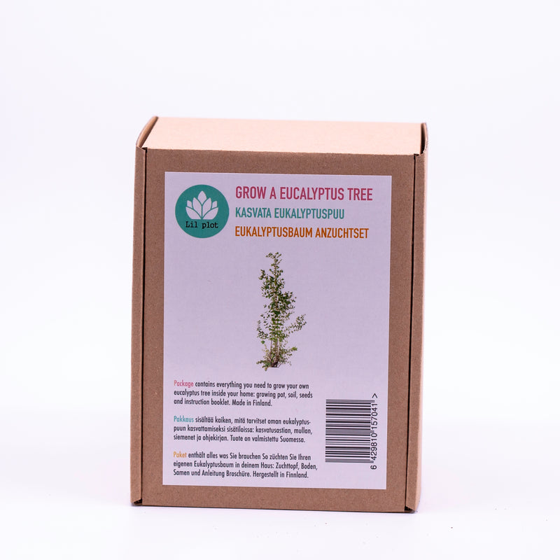 Eucalyptus Tree Growing Kit
