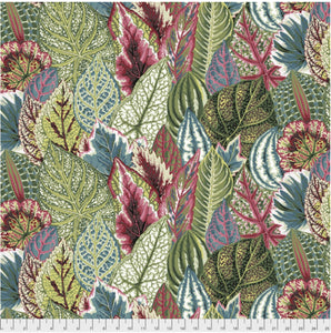 "Free Spirit Fabrics - Kaffe Fassett Collective ""Coleus in Green"" by Phillip Jacobs"