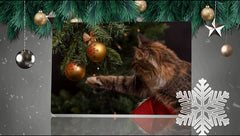 Holiday Cheer Slideshow Template