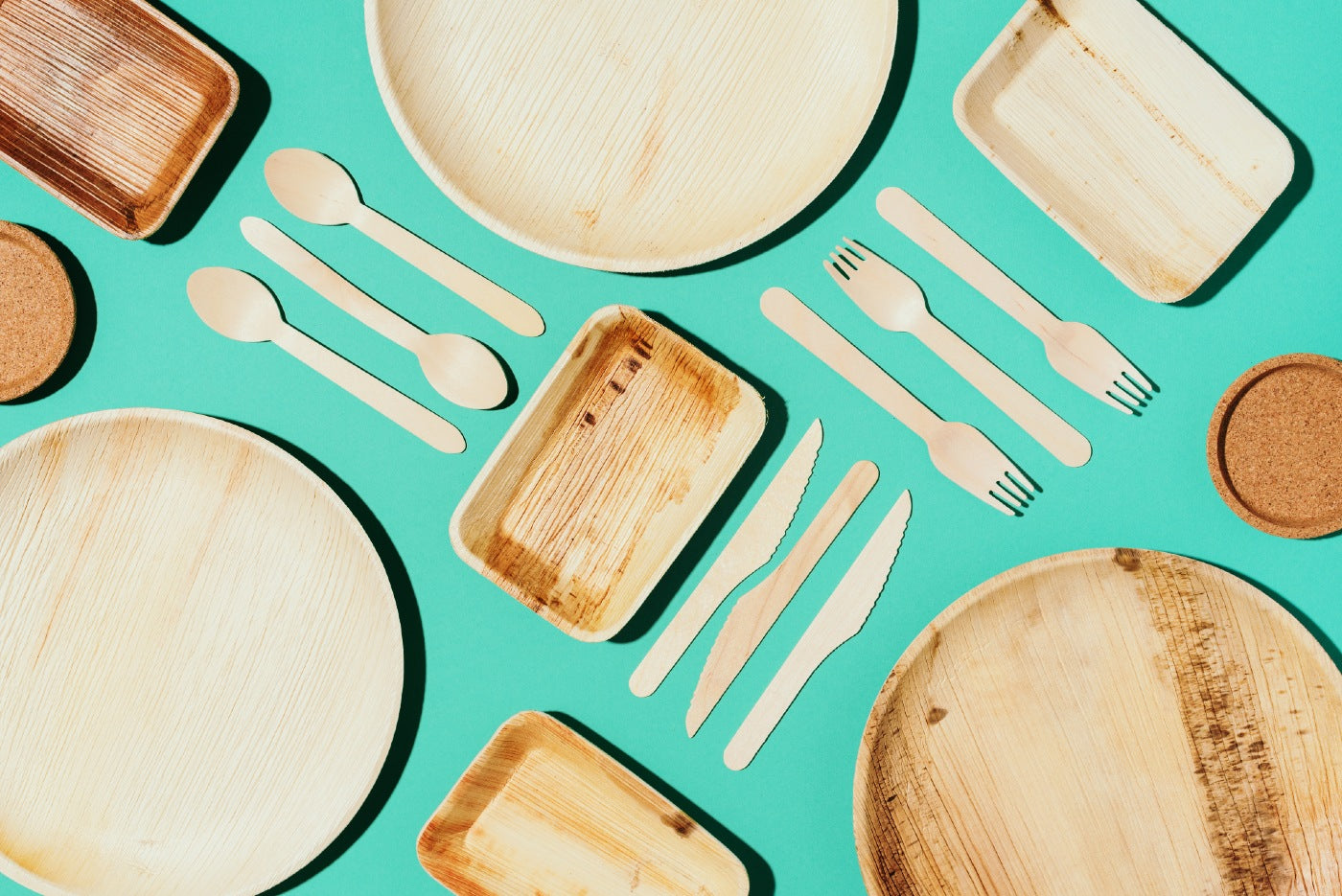 Palm Leaf Plates Vs. Bamboo Plates: Which One Is Better?