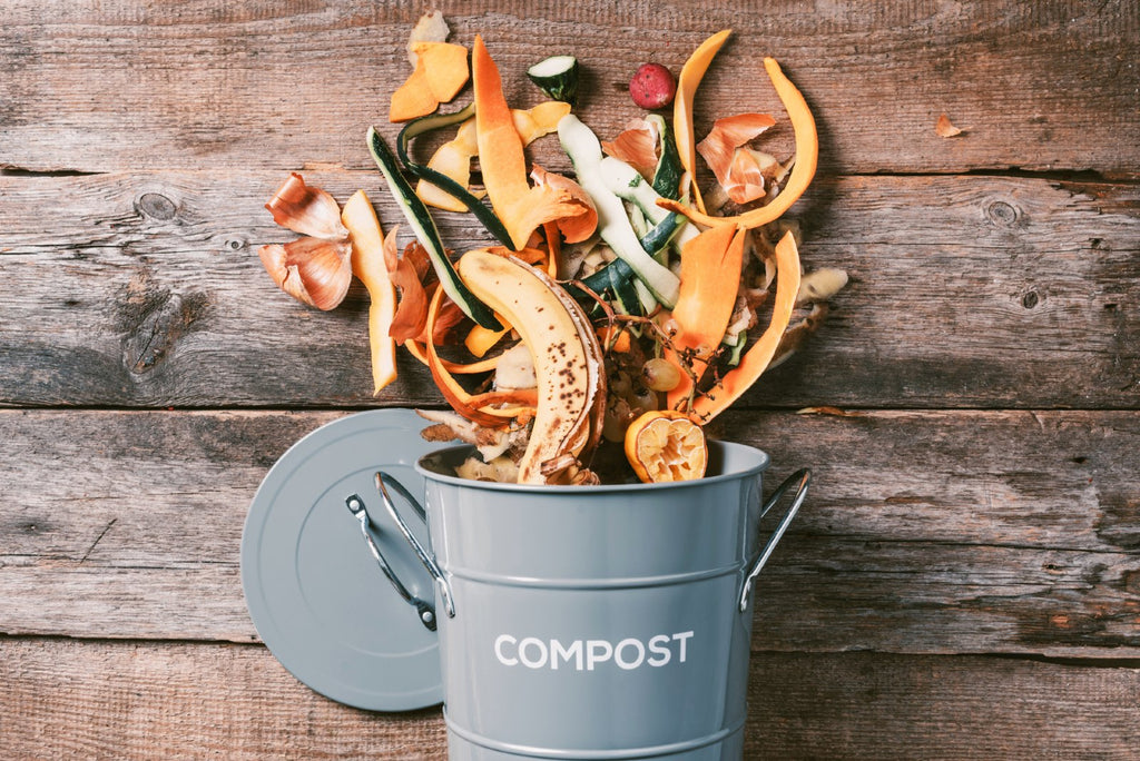 small compost bin with vegetable