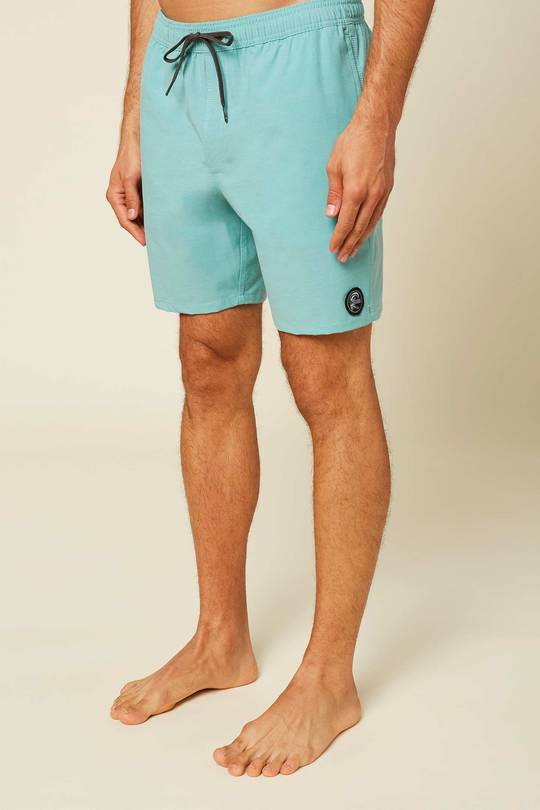 Solid Volley Boardshorts for Men